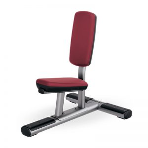 Life Fitness Dumbbell Stool Utility Bench