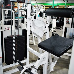 Life Fitness Pro Series Lower Back Extension