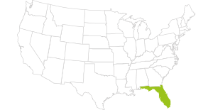 USA Map - Florida