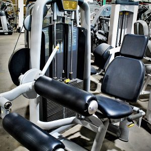 TechnoGym Selection Leg Curl